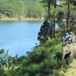 EXP6. ENJOY THE TRANQUILITY, ELEPHANT RIDING